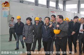 县委书记带团,观摩木门十大品牌金马首新型环保喷涂生产线